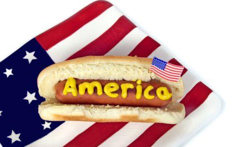 Hot Diggity Dog! Is it a Sandwich?