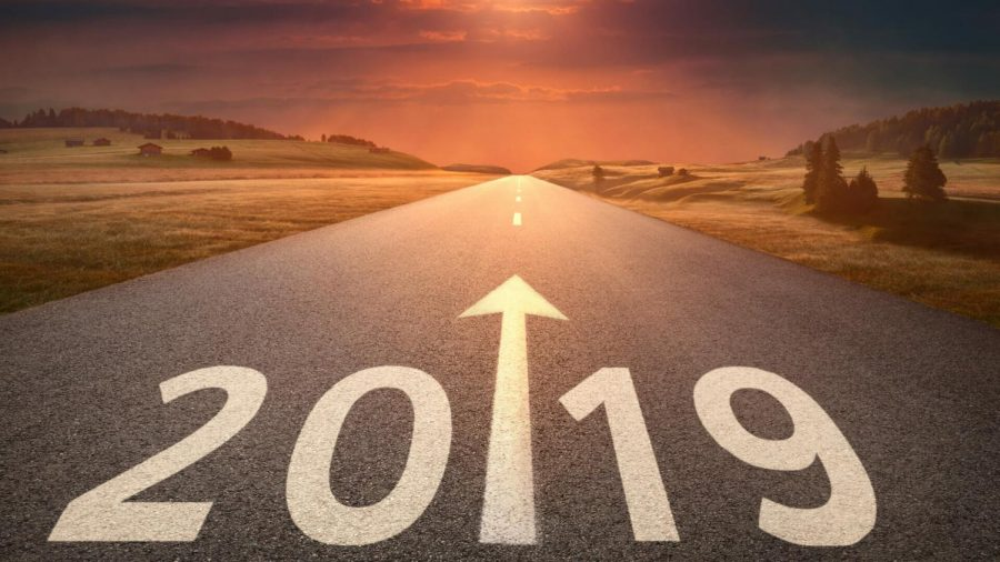 What to Look Forward to in 2019!